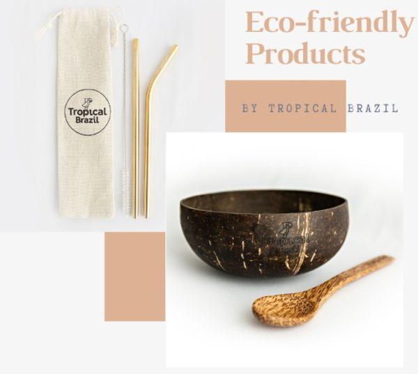 Kit coconut bowl + 2 straws